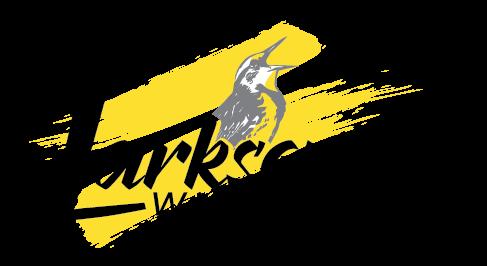 Larksong logo